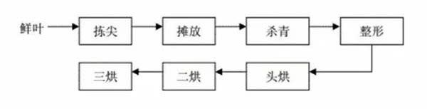太平猴魁工艺流程